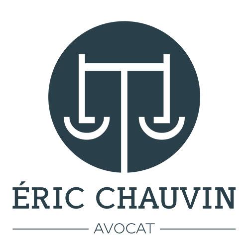Eric Chauvin Droit du Travail Droit de l'aide et de l'action sociale